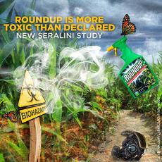 glyphosate-herbecide-roundup-monsanto