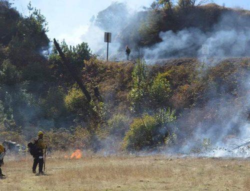 Indigenous Land stewardship through fire
