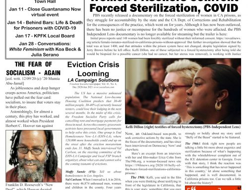 PDF of Jan.  2021 Print Edition